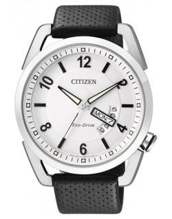 Citizen Metropolitan