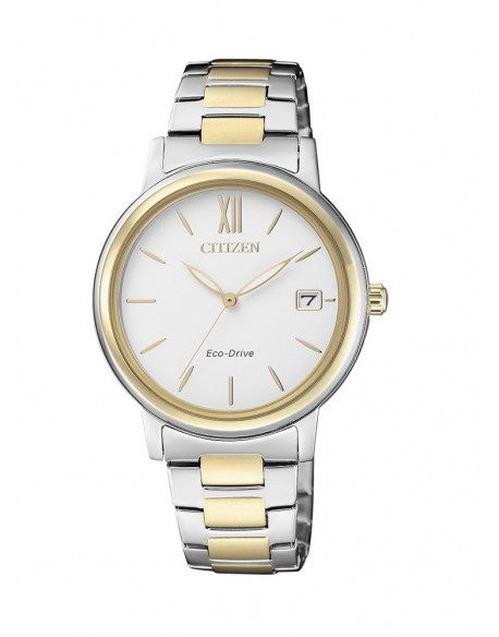 CITIZEN FE-6094-84A